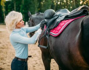 Best Saddle Pad For Kissing Spine
