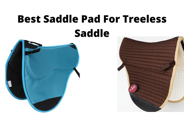 Best Saddle Pad For Treeless Saddle