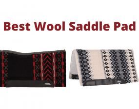 Best Wool Saddle Pad