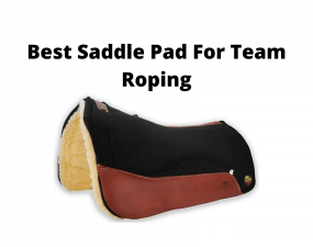 Best Saddle Pad For Team Roping