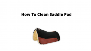 How To Clean Saddle Pads